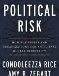 Political Risk book cover