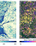 Figure of satellite image of soil moisture and corn yields