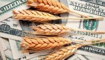 wheatprice stevents