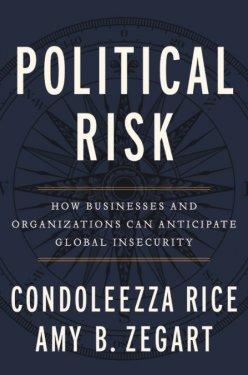 Political Risk book cover