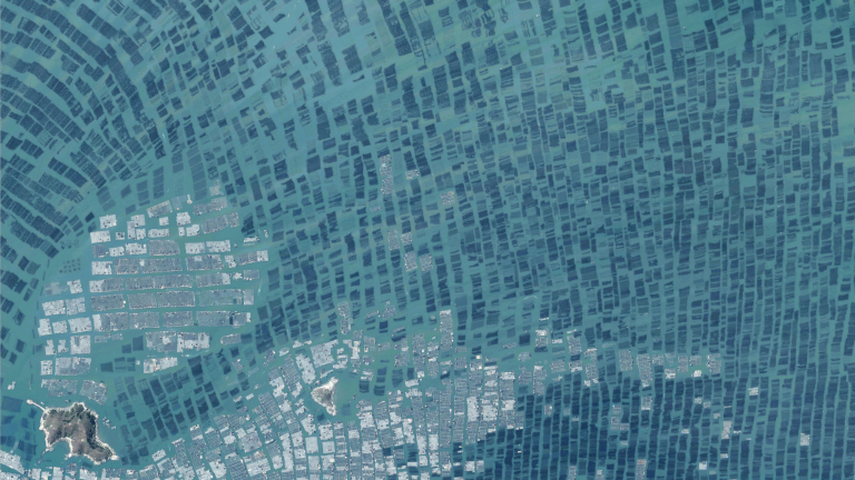 Aerial photo of aquaculture in Luoyuan Bay, China