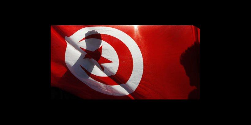 Fsi Cddrl Larry Diamond On Tunisia S Uncertain Transition