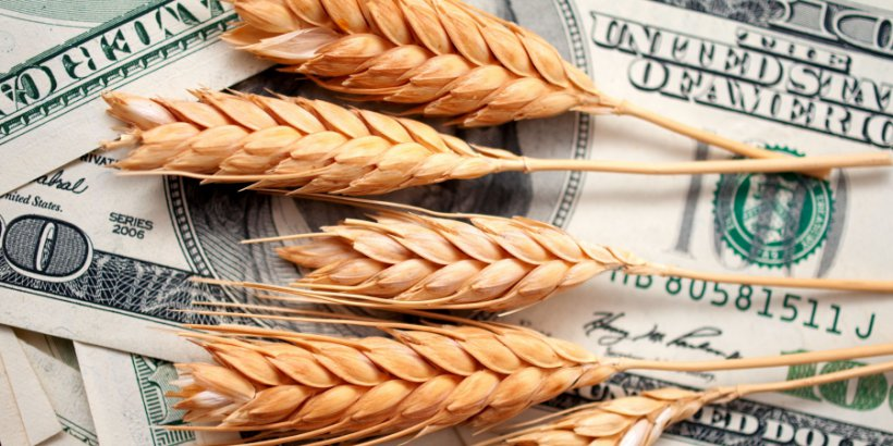 WheatPrices headliner