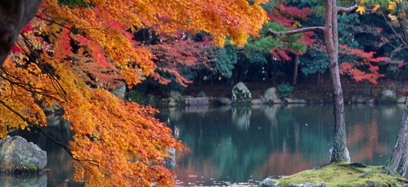 AutumnKyoto hdlnr