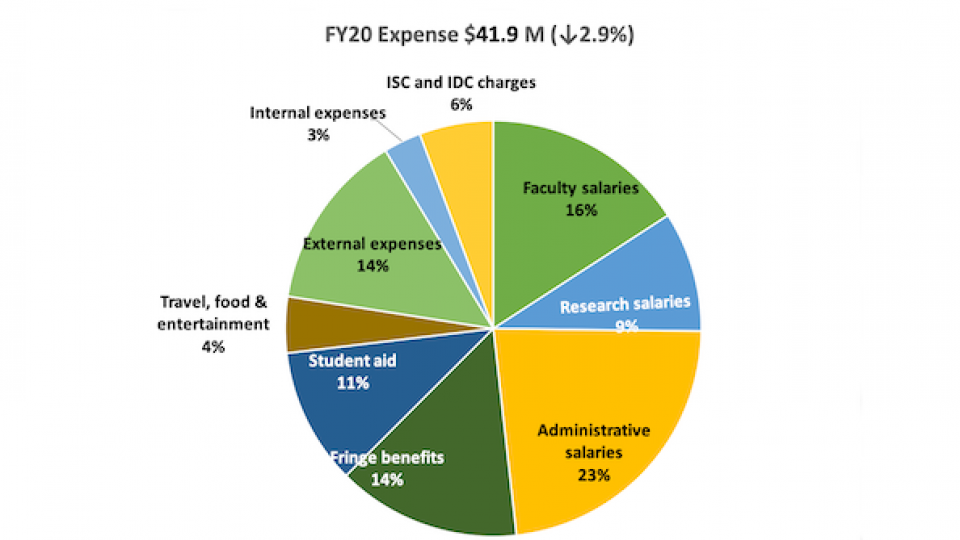Pie CHart Showing FY20 Expenses for FSI