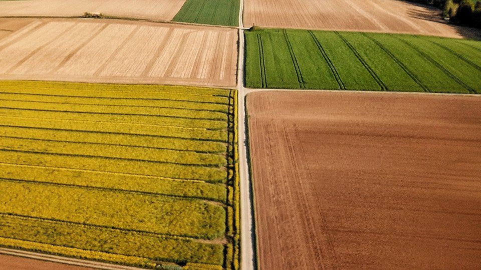 A drone shot of several fields growing different crops
