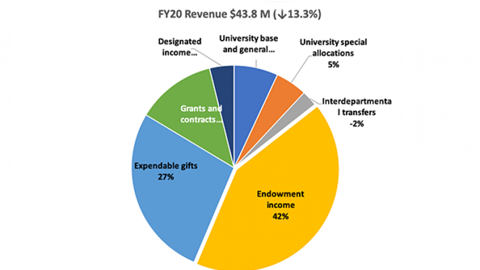 Pie CHart Showing FY20 Revenue for FSI