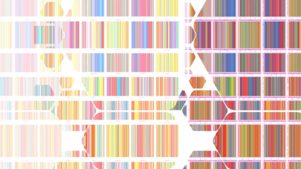 digital photo pattern