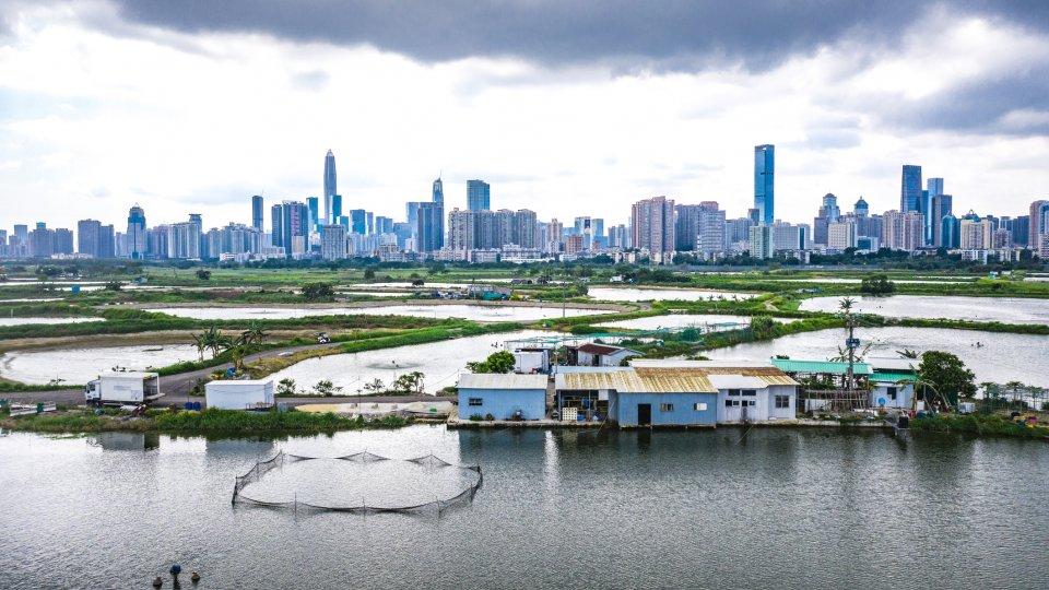 Landscape and skyline of Shenzhen,, China