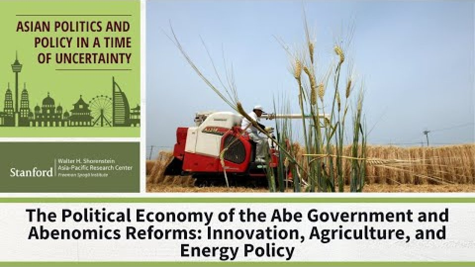 The Abe Government and Abenomic Reforms: Innovation, Agriculture, and Energy Policy