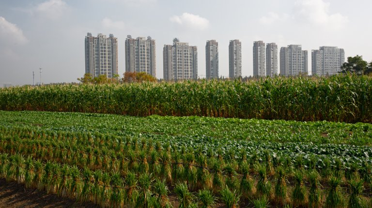 A row of sky-rise buildings stand behind green farmland in Hangzhou, China,