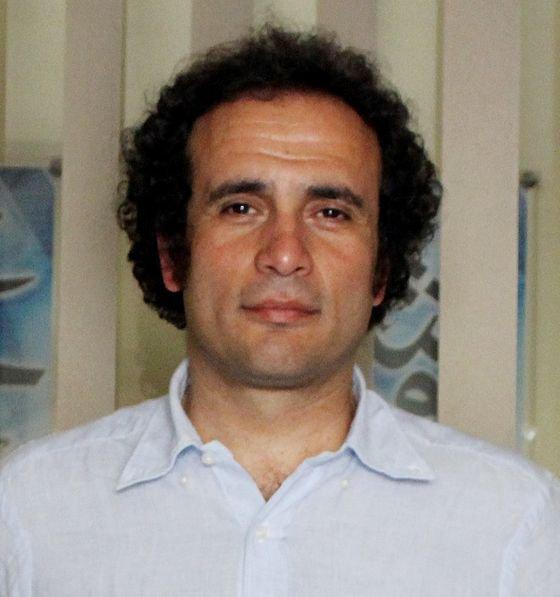 Egypt's Exiles: Repression, Polarization and Politics