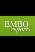 embor logo homepage