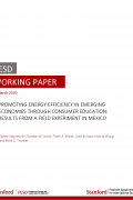 pesd working paper mexico cover mar 2020