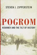 Pogrom book cover