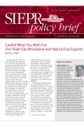 policy brief 11 2012 proof
