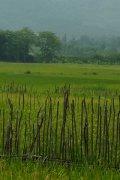 ruralchina flickr togawanderings