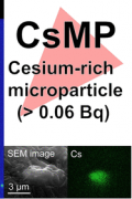 Novel Method of Quantifying Radioactive Cesium-Rich Microparticles (CsMPs) in the Environment from the Fukushima Daiichi Nuclear Power Plant