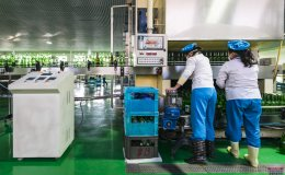 Two women working at a bottling plant in Kangso, P'yongan-namdo, North Korea