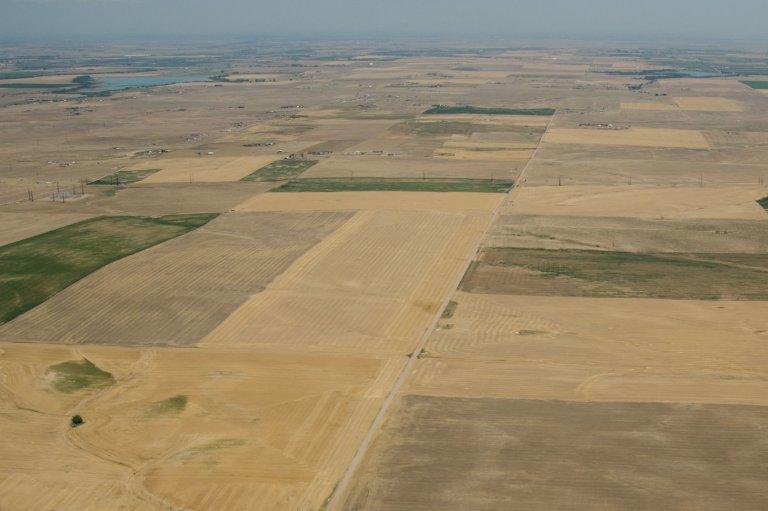 Aerial view of dry brown crop fields
