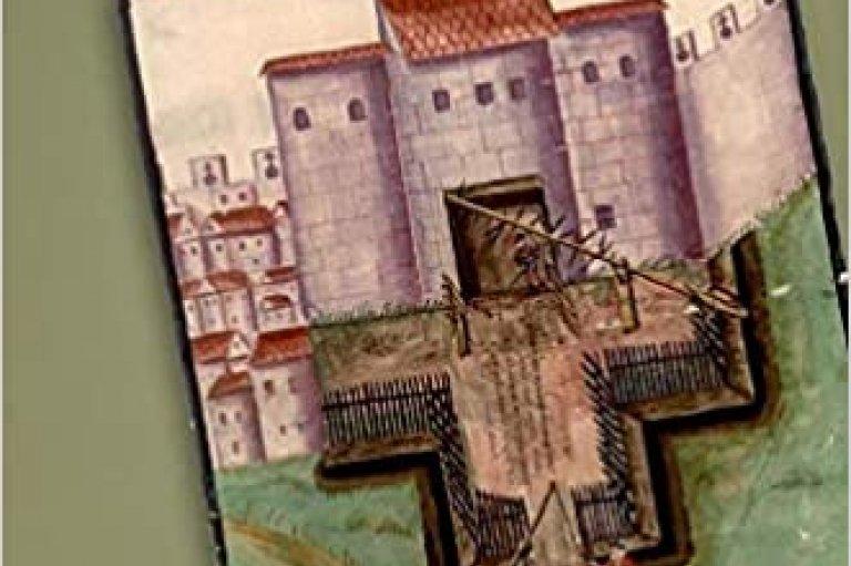 Luca Scholz book cover