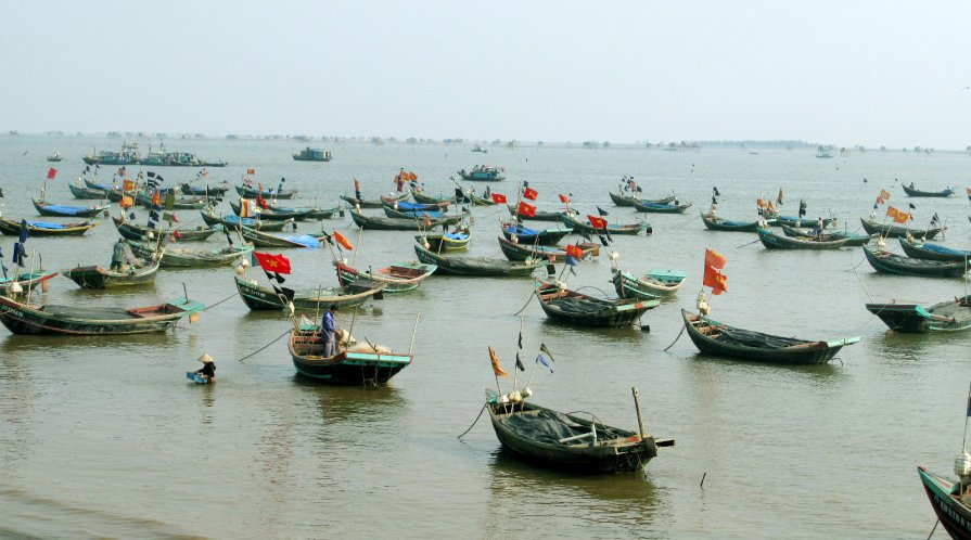 Many small fishing boats in shallow water