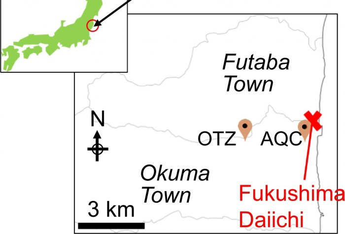 Location of Fukushima Daiichi Nuclear Power Plant and sampling location. OTZ and AQC stand for Ottozawa and aqua culture center in Okuma town, respectively.