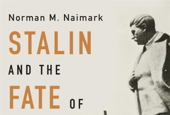 Stalin and the Fate of Europe book
