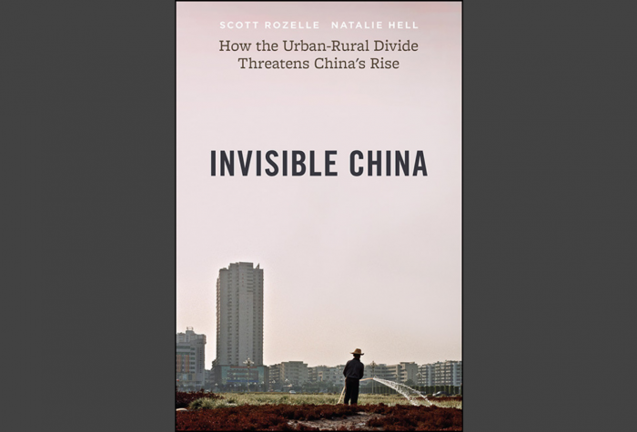 "Book cover for ""Invisible China: How the Urban-Rural Divide Threatens China's Rise"" showing a man watering a field in front of high rise buildings."