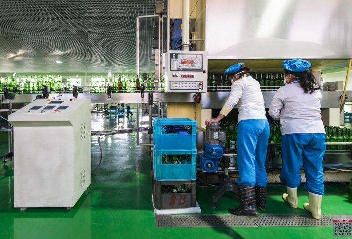 Two women working at a bottling plant in Kangso, P'yongan-namdo, North Korea