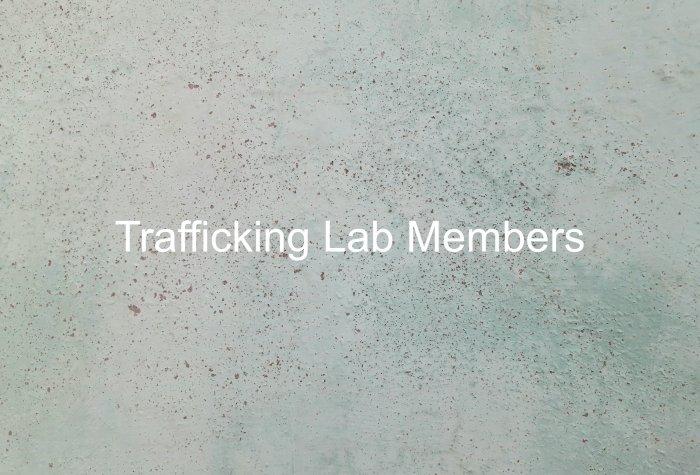 Stanford Human Trafficking Data Lab Ilustration