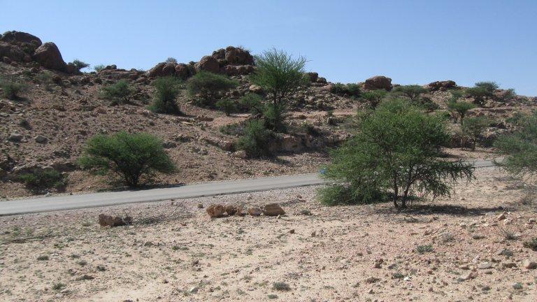 somalia landscape