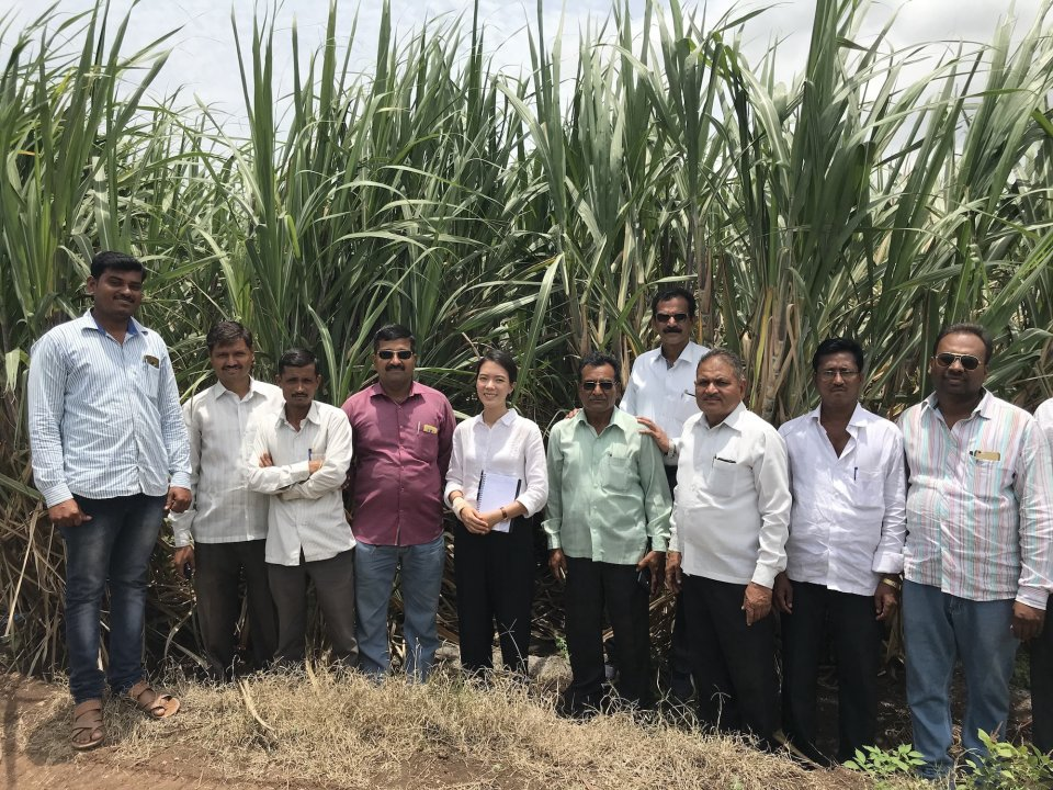 Lead author with a group of farmers in Indian sugar field