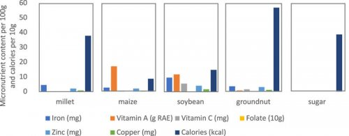 Figure showing micronutrient content and calories of crops