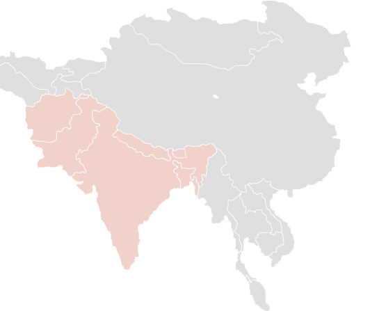 topic region south asia